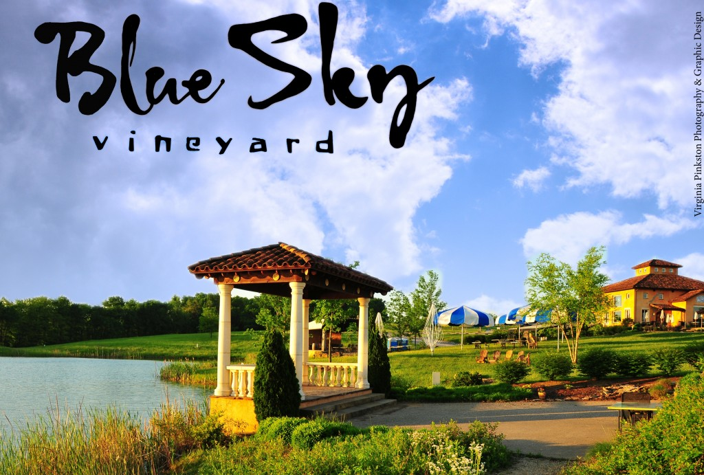 Blue Sky Vineyard Wedding Gazebo