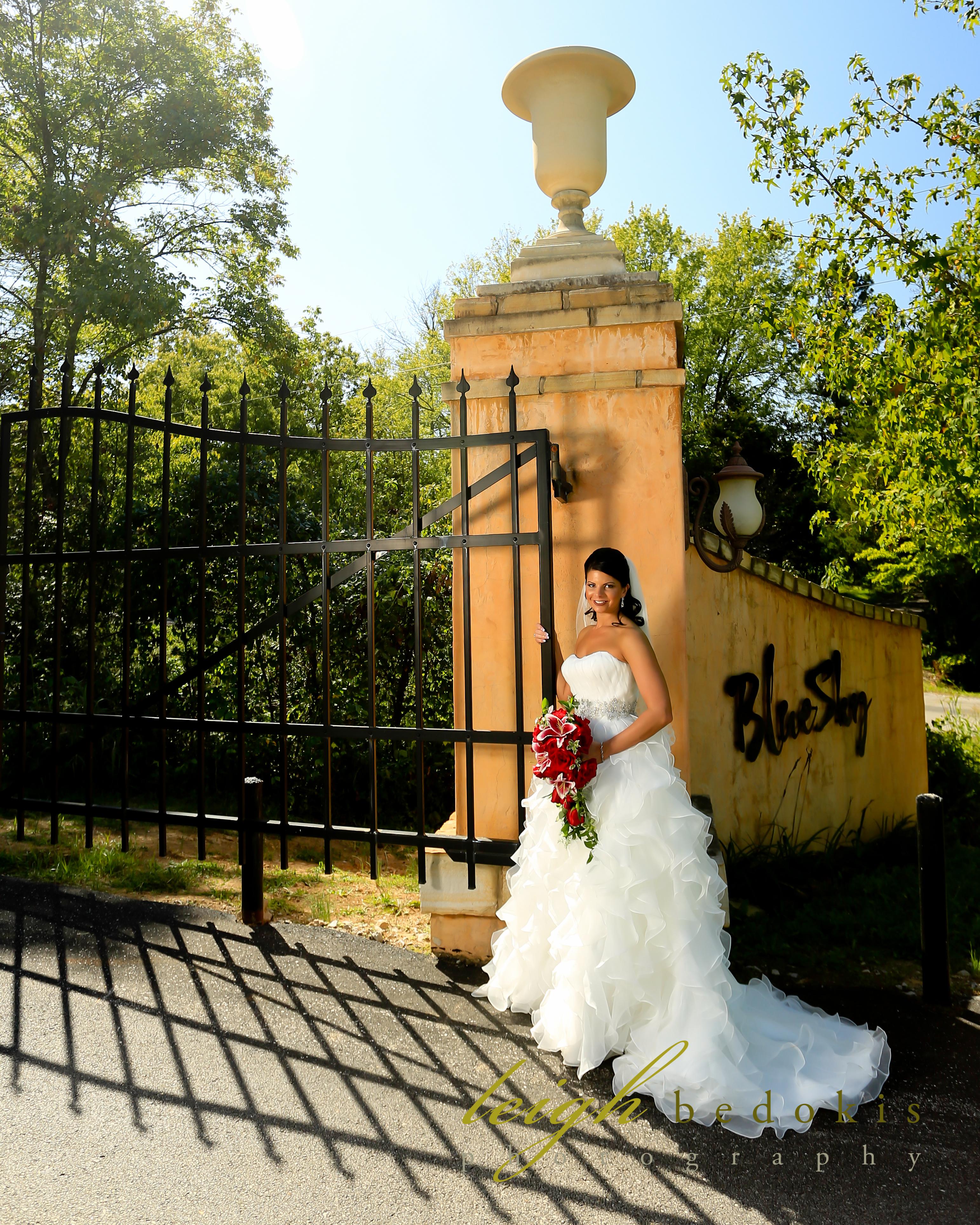 Blue Sky Vineyard - Bride