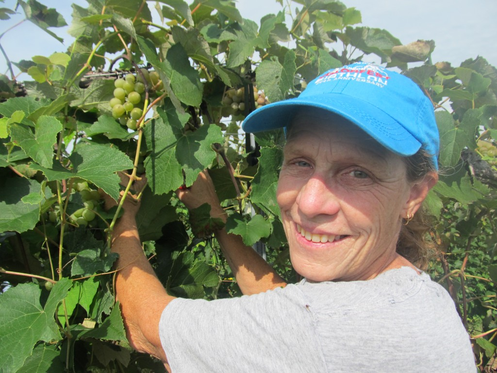 Blue Sky Vineyard Winemaker - Karen Hand